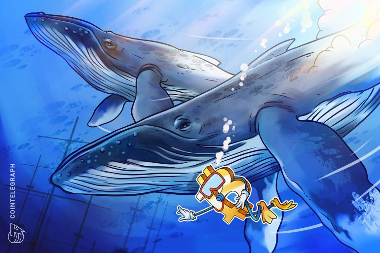 Bitcoin whale clusters determine the key support level for the continuation of the rally